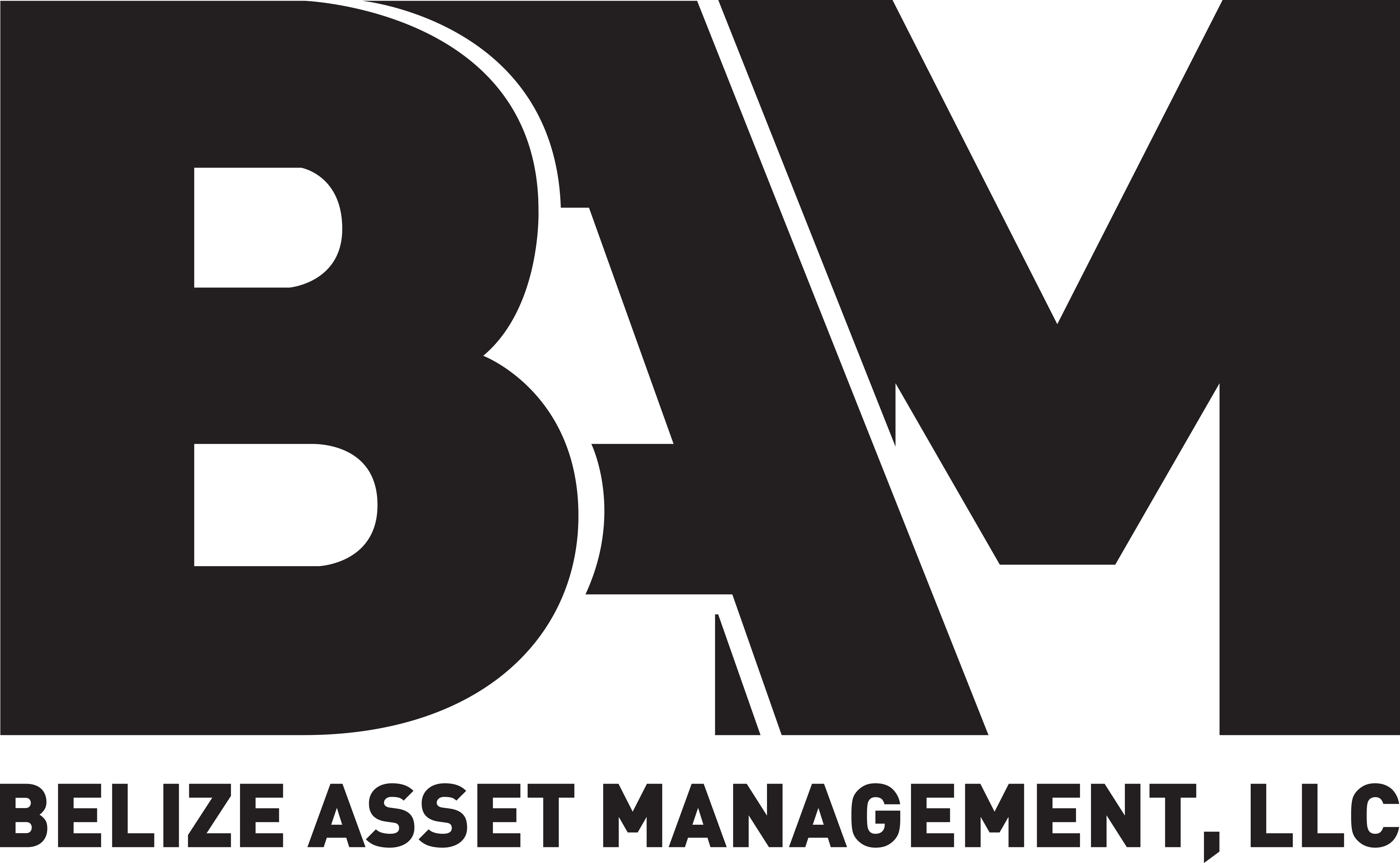 Belize Asset Management - John Turley